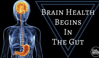 Brain Health Begins In The Gut
