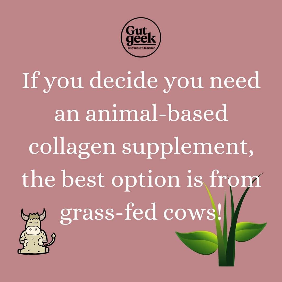 Animal-based collagen supplements